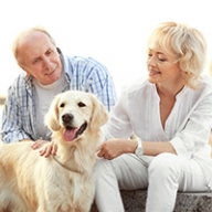 An older man and woman sitting down and petting a dog